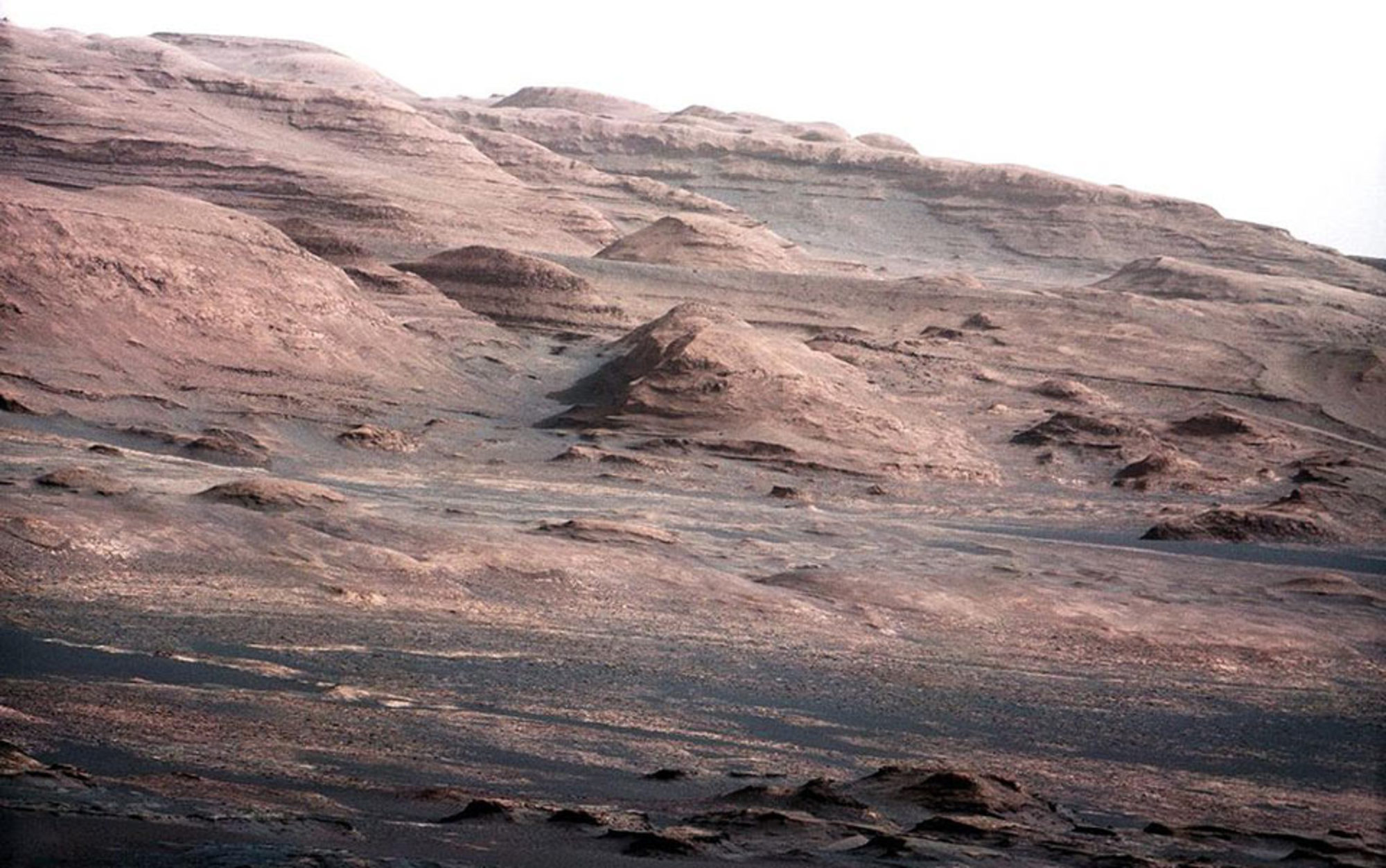 life on mars the fantasy that fuels curiosity essays