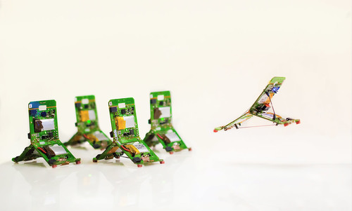 Robogamis are the real heirs of terminators and transformers   Aeon
