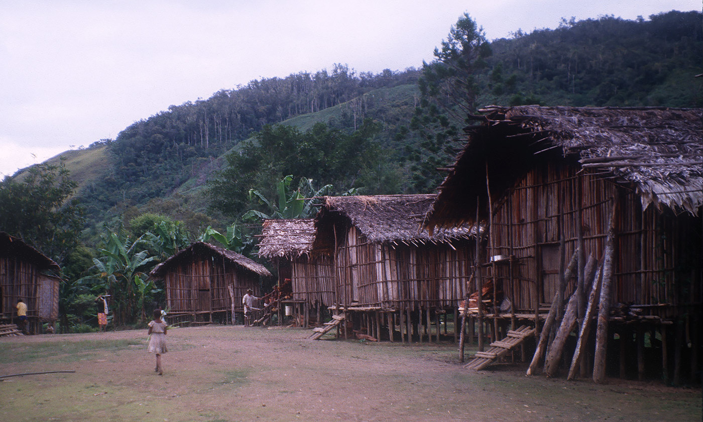 <p>An Urapmin village in Papua New Guinea. <em>Photo courtesy the author</em></p>