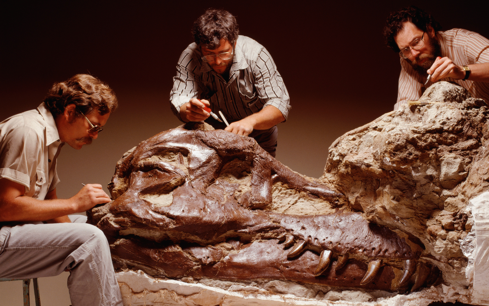 what drives dinosaur collectors to covet big bones essays