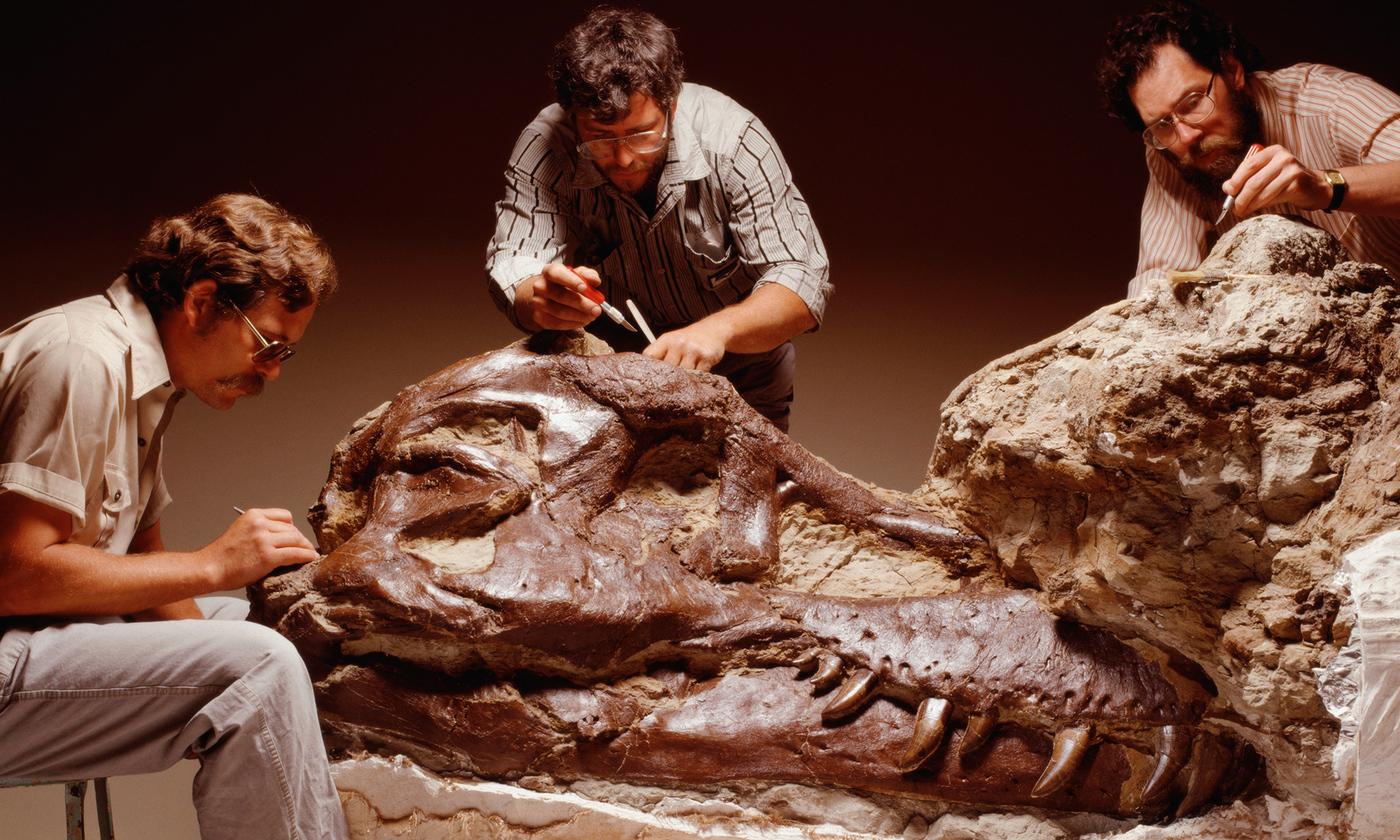 A tyrannosaur of one's own   Aeon